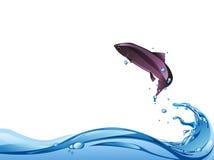 Рыбы скачут Стоковая Фотография