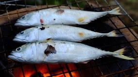 Рыбы скумбрии зажаренные на камине Стоковые Изображения