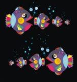 рыбы смешные Стоковое фото RF