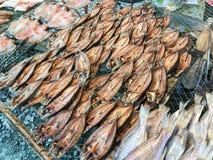 Рыбы Солнц-высушенные строкой посоленные Стоковые Изображения