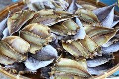 рыбы солёные Стоковая Фотография RF