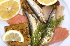 рыбы среда золы Стоковые Изображения RF