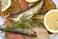 рыбы среда золы Стоковая Фотография