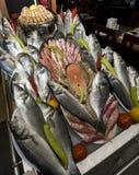 рыбы стенда Стоковые Изображения