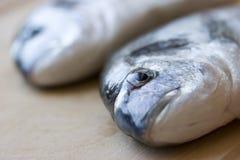 рыбы стола Стоковое фото RF