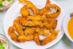 Рыбы столешницы разнообразия еды зажаренные жареной курицей зажарили в духовке папапайю свинины Стоковые Изображения RF