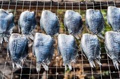 Рыбы сушат Стоковое фото RF