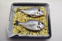 2 рыбы с желтым цветом картошек белым черным Стоковое фото RF