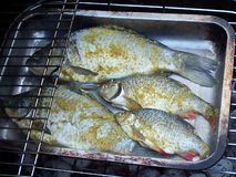 Рыбы с специей на гриле сток-видео