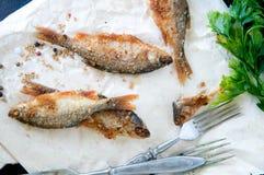 Рыбы, служат обломоки, который Стоковая Фотография RF