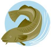 рыбы трески иллюстрация вектора