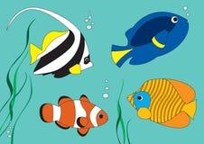 рыбы тропические бесплатная иллюстрация