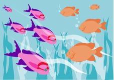 рыбы тропические Иллюстрация вектора