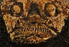 рыбы уродские Стоковое Изображение