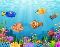 Рыбы шаржа под морем Стоковые Изображения
