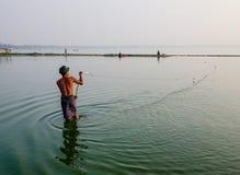 Рыбы людей заразительные на озере в Bagan, Мьянме Стоковая Фотография RF