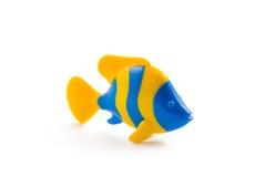 рыбы Стоковые Изображения