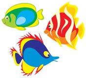 рыбы Иллюстрация штока