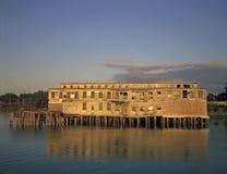рыбы cannery старые Стоковые Изображения RF
