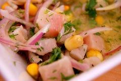 рыбы ceviche Стоковые Изображения