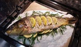 Рыбы coocked с лимонами стоковое фото