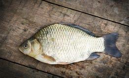 Рыбы Crucian на древесинах Стоковое фото RF