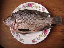 Рыбы Crucian для варить Стоковые Изображения RF