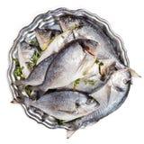 Рыбы Dorado на плите Стоковое фото RF