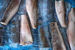 Рыбы Frozzen Стоковая Фотография RF