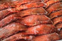 Рыбы Frozzen Стоковое Фото