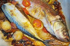 рыбы griddle зажжено стоковая фотография rf