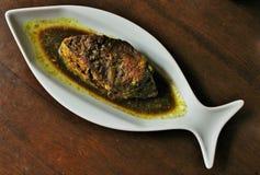 Рыбы Hilsa Стоковые Изображения RF