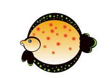 Рыбы Limanda Стоковое Изображение RF