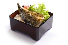Рыбы Saba зажаренные с рисом на белизне Стоковые Изображения RF