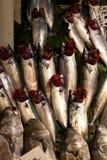 Рыбы tane Palamut в льде на рынке Стамбуле стоковые изображения