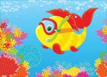 Рыб-водолаз на рифе Стоковые Изображения RF