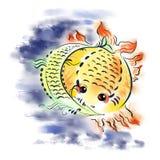 Рыб-солнце и рыб-луна Стоковые Фото