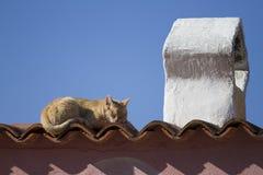 Рыжеволосый кот спит в солнце на плитках крыши типичного среднеземноморского дома с традиционным форменным камином стоковое фото