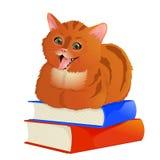 Рыжеволосый кот лежа на книгах Стоковое Изображение