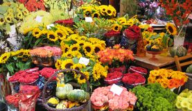 рынки цветка стоковые фото
