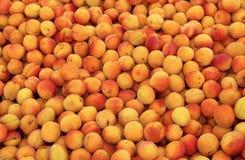 рынок абрикосов Стоковые Фотографии RF