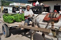 Рынок в Timana - Колумбии Стоковое Изображение