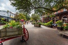 Рынок города саванны Стоковые Изображения