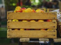 Рынок коробки Яблока Стоковое Изображение