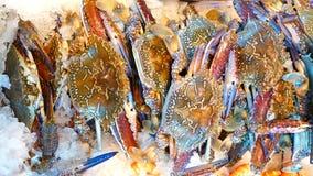 Рынок морепродуктов Стоковое Изображение RF