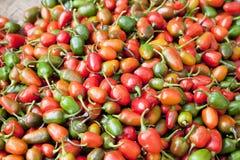 рынок Непал capsicums свежий малый Стоковое Фото