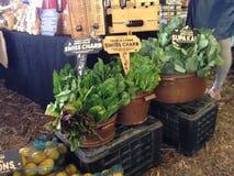 рынок органический Стоковые Фотографии RF