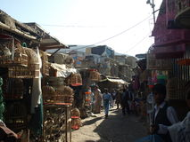 Рынок птицы Faroshi Ka, Кабул Стоковое фото RF