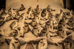 рынок рыб свежий стоковые фото