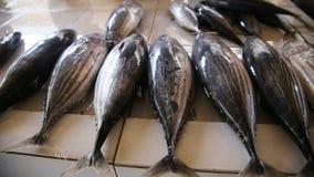 рынок рыб свежий видеоматериал